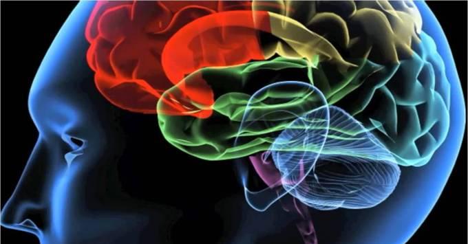 IT cognitive automation market research